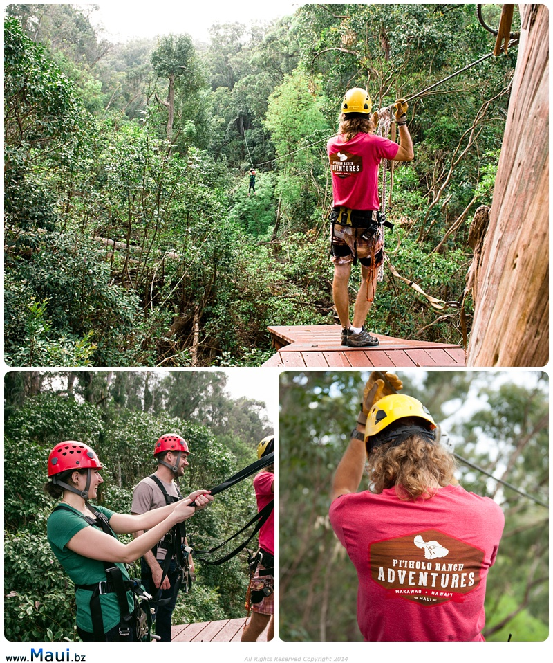 upcountry zipline tours