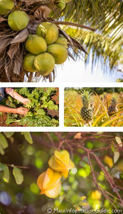 Hawaiian produce