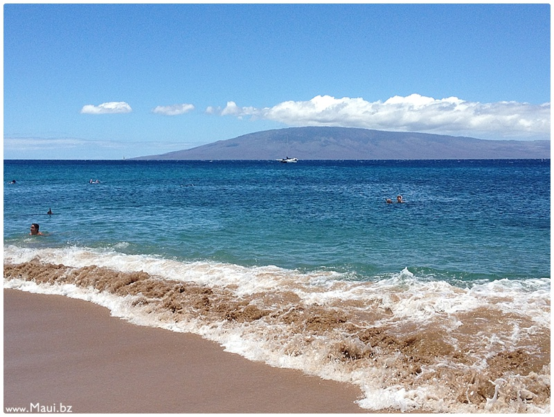what to do on maui