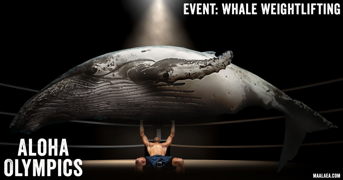 whale weightlifting