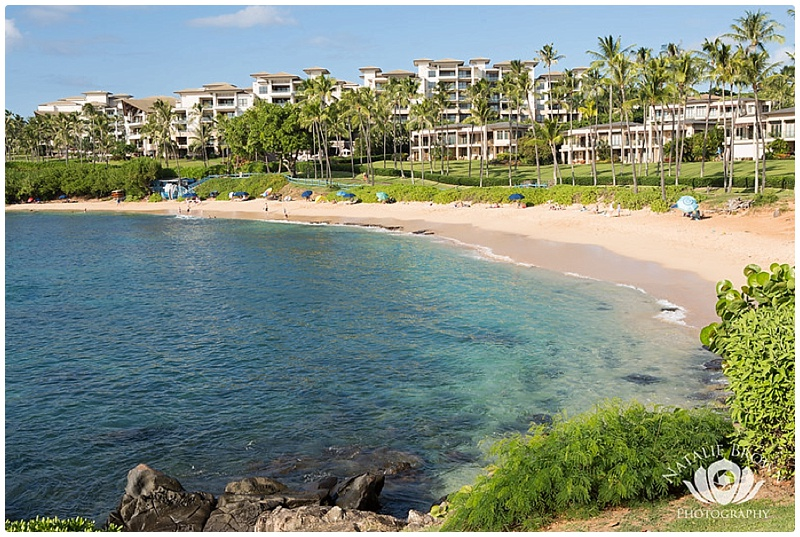 maui events by month