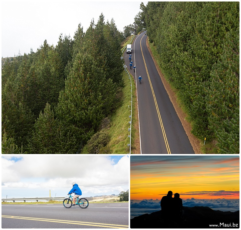 biking haleakala tours