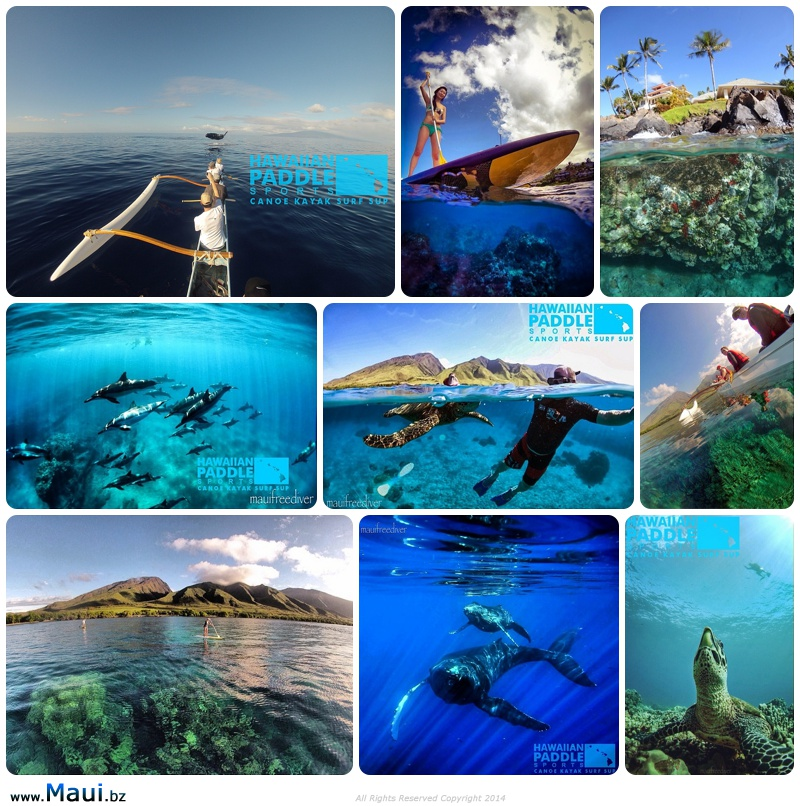 private tours maui