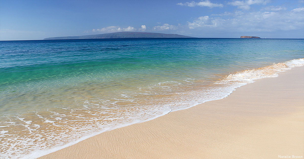 Moving to Maui: One Year Later