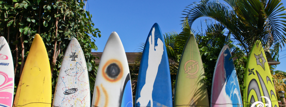 surfing paia town