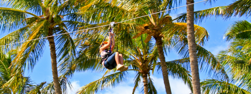 maui tropical zipline