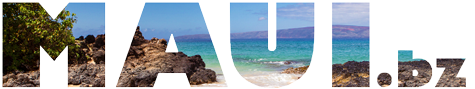 Maui Bloggers Zone - Maui News and other Updates from our Maui Blog