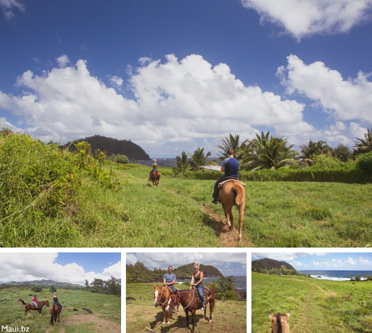 horseback in Maui Hawaii