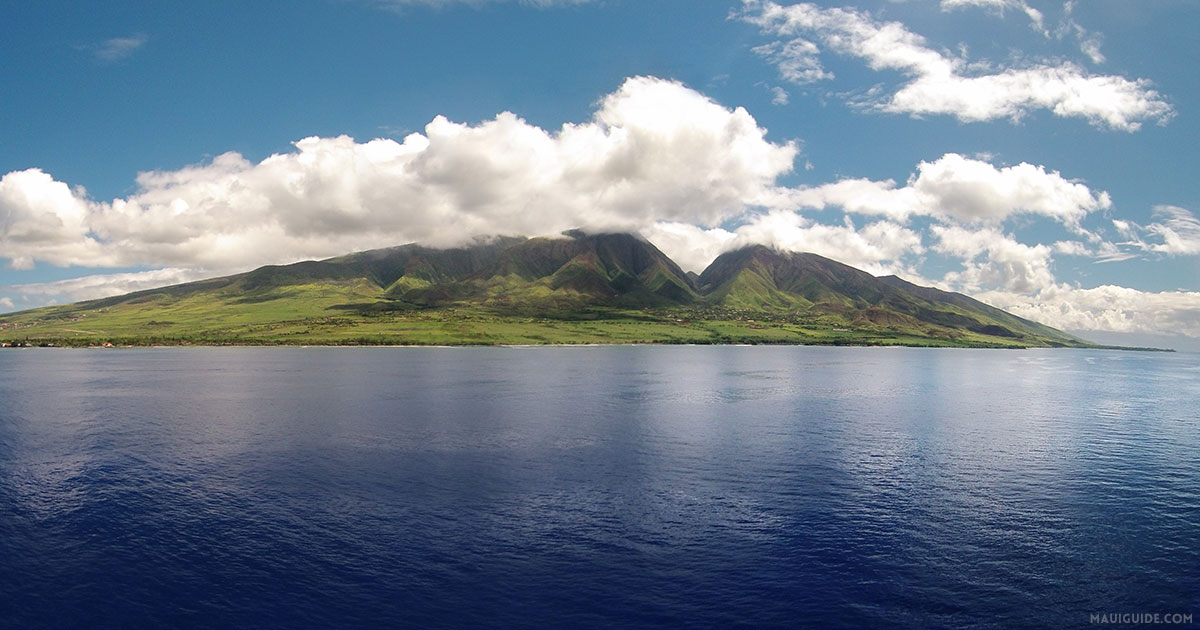 Moving to Maui Tips