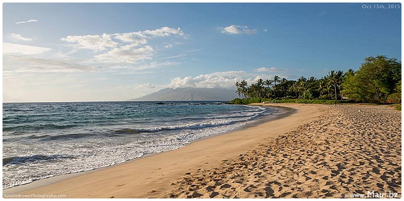 maui festivals and concerts