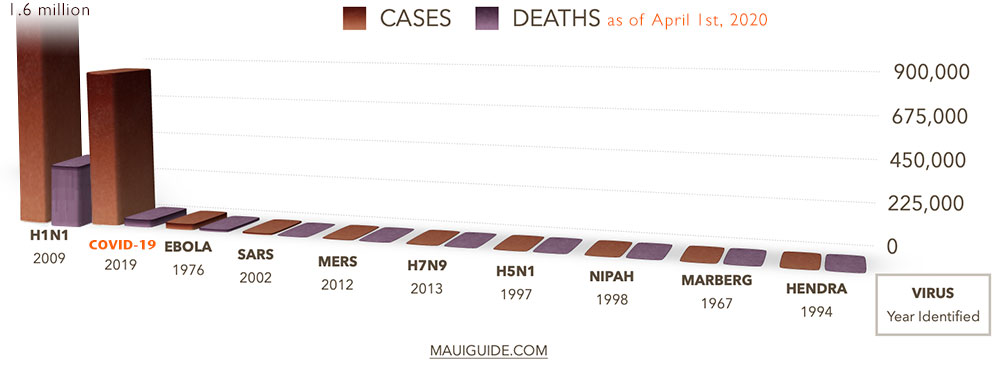 cases deaths