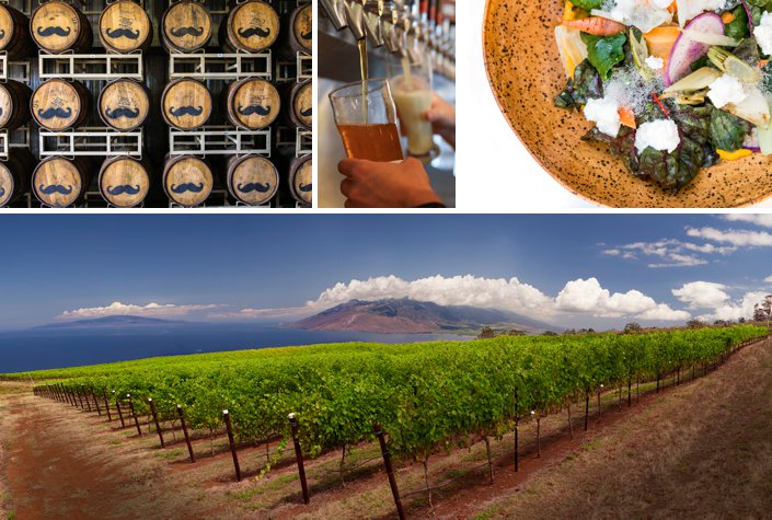 Maui wineries and distilleries