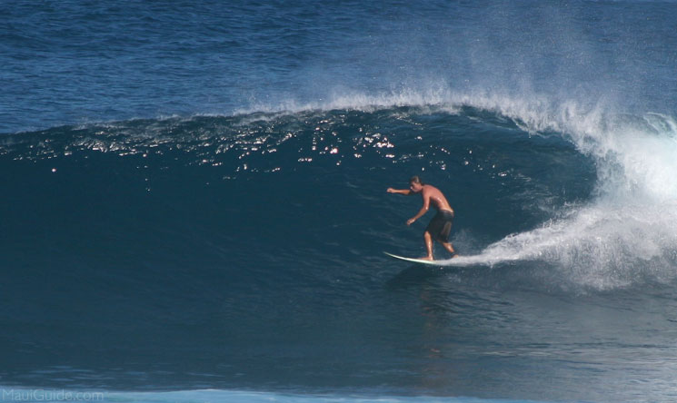 Maui surf Conditions