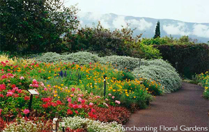 Enchanting Floral Gardens Maui Hawaii