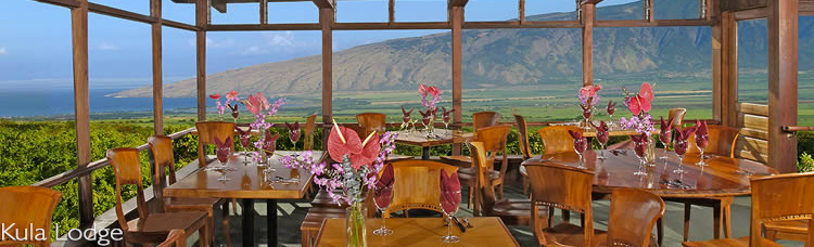 Mauis Winery Kula Maui Hawaii