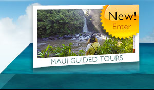 mauis guided hiking tours