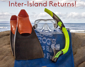 Snorkeling gear returns