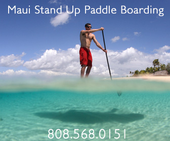 maui stand up paddle boarding