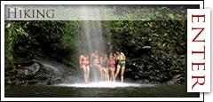 Maui Guided Tours