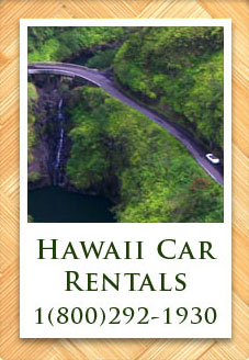 Best car renting option in maui
