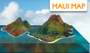 'Maui Map' from the web at 'http://www.mauiinformationguide.com/img/maui-map.jpg'