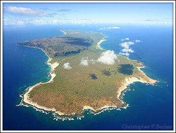 Niihau Aerial Photo